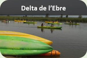 Fi curs Delta