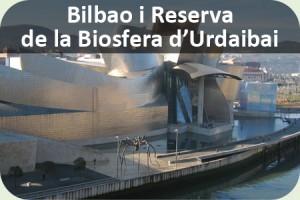 Fi curs Euskadi