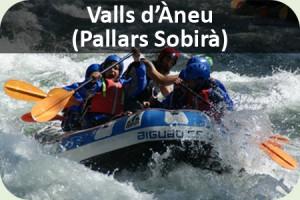 Fi curs Pallars